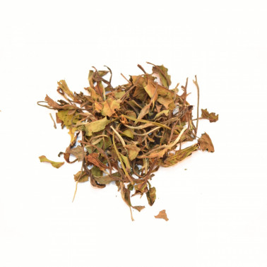 Tè Bianco Pai Mu Than
