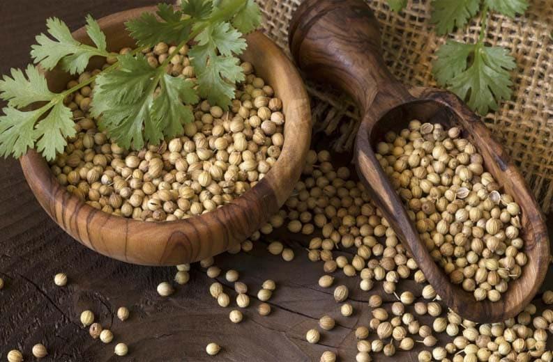 semi di coriandolo img2.jpg